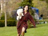 Sandra Bullock kép